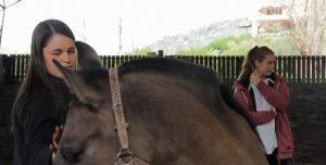 Aprendizaje Experiencial: Estudiantes te cuentan cómo fue su trabajo con caballos