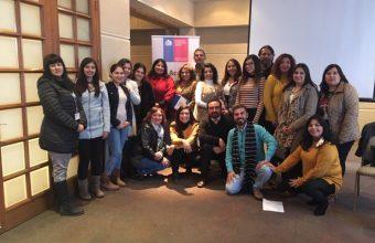 Profesionales de la CAJ de Coquimbo fueron capacitados en Primeros Auxilios Psicológicos por equipo SPI Santiago